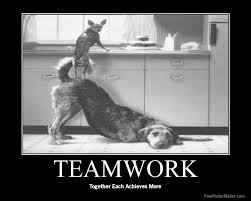 Found at: http://mattabbo.com/roark-gym-uses-teamwork-to-hurt-you-in-a-good-way/
